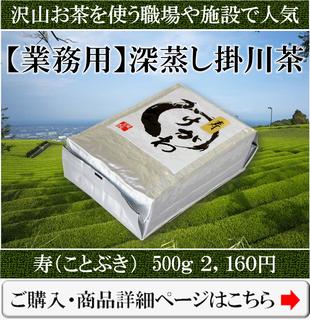 業務用の深蒸し掛川茶の寿