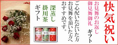 快気祝にお茶(静岡・深蒸し掛川茶)ギフトの贈り物