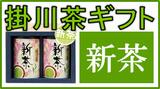 新茶の深蒸し掛川茶ギフト商品一覧
